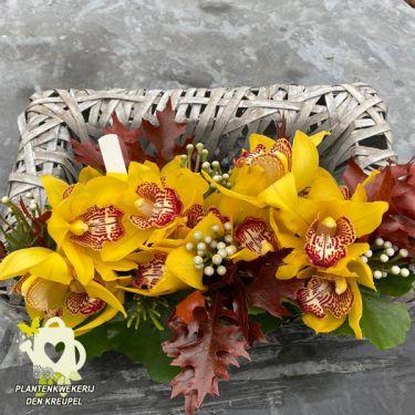a1a1-bloemstuk-orchidee