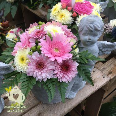 allerheiligen-met-roze-engel