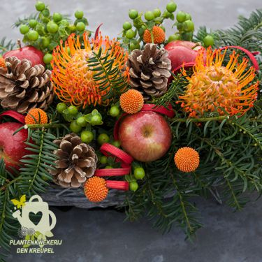 bloemstuk-appel-protea