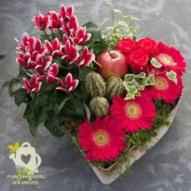 grafdecoratie-hart-planten