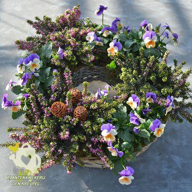 grafdecoratie-krans-tweekleurig-viooltjes